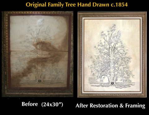 Original Family Tree Hand Drawn